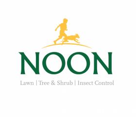 NOON ID